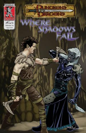 Dungeons & Dragons: Where Shadows Fall #4