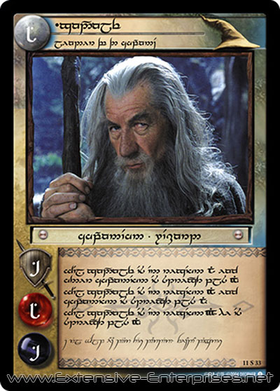 Gandalf, Leader of the Company