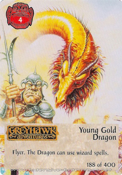 Young Gold Dragon